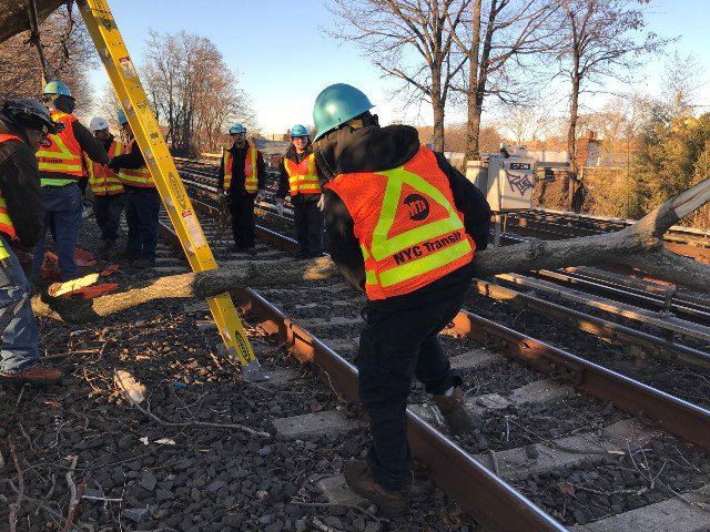 MTA workers cleared downed tree debris from the subway tracks yesterday.