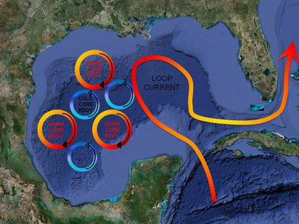 """""""Water enters the Gulf through the Yucatan Strait, circulates as the Loop Current, and exits through the Florida Strait eventually forming the Gulf Stream. Portions of the Loop Current often break away forming eddies or 'gyres' which affect regional current patterns. Smaller wind driven and tidal currents are created in nearshore environments. Drainage into the Gulf of Mexico is extensive, covering more than 60% of the United States, and includes outlets from 33 major river systems and 207 estuaries."""""""
