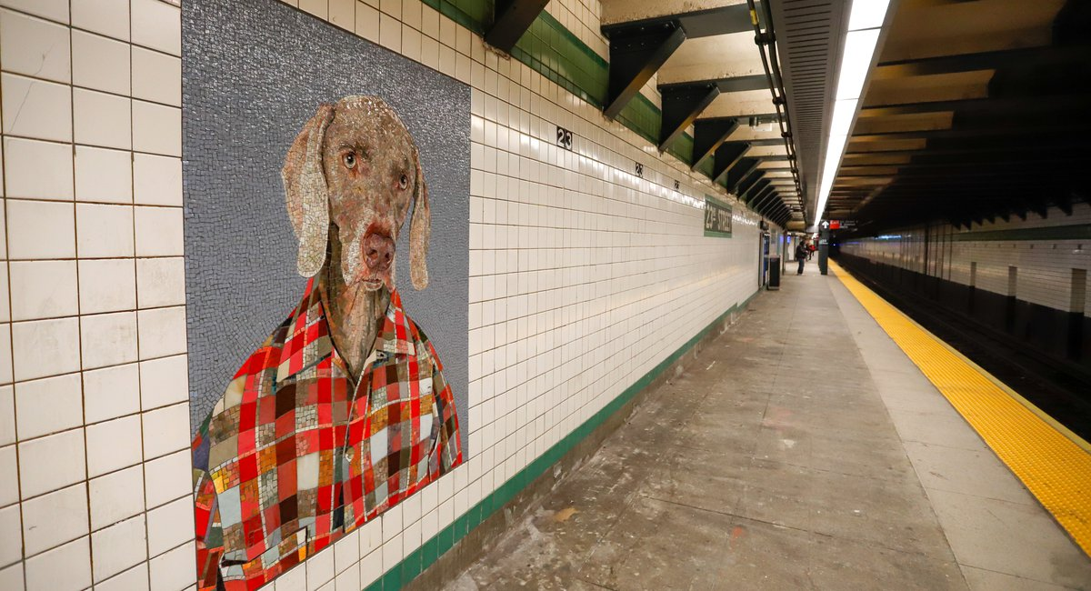 MTA Deletes Tweet Explaining Why Subway Station Benches Were Removed - Gothamist
