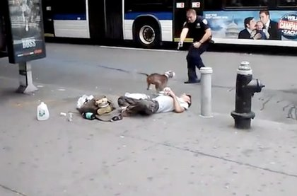 An NYPD officer shoots a dog in Manhattan this year.
