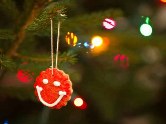 5 Easy Diy Holiday Ornaments Made With Food Gothamist