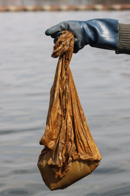 Elkins holds aloft a filthy plastic bag that had become entangled in the boat's propeller. </br>