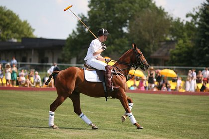 Prince Harry playing polo at Governors Island