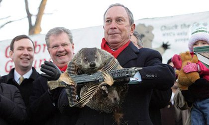 Three things that happened to Mayor Bloomberg this year: Got bit by groundhog, got annoyed enough to call a reporter a disgrace, and spent over $100 million on his ultimately successful (but by a smaller than expected margin) mayoral run.