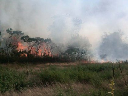 """""""Right now: A 4-alarm #brushfire on Buffalo St & Hyland Blvd on SI. No injuries. No buildling damage"""""""