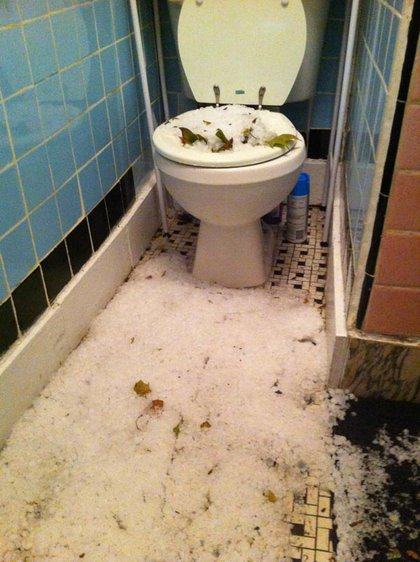 Hail and leaves in a toilet and on the floor