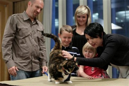 Willow the cat is reunited with the Squires family