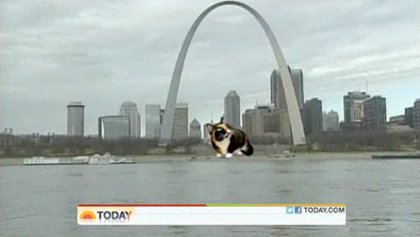 The Today Show imagined Willow's cross-country travels