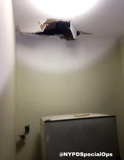 The ceiling Timoshenko crashed through
