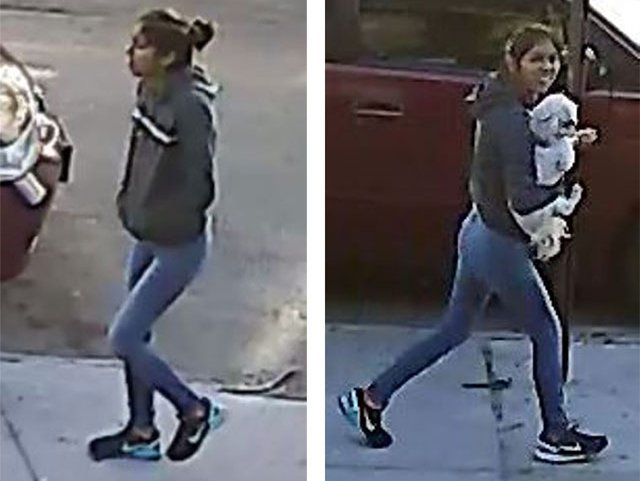 Images of the suspect