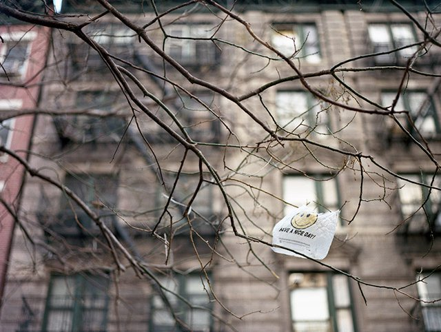 Photograph by dalioPhoto / Flickr