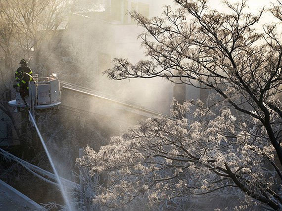 Firefighter uses hose to battle a fire in Bedford-Stuyvesant—and the water formed ice on a tree