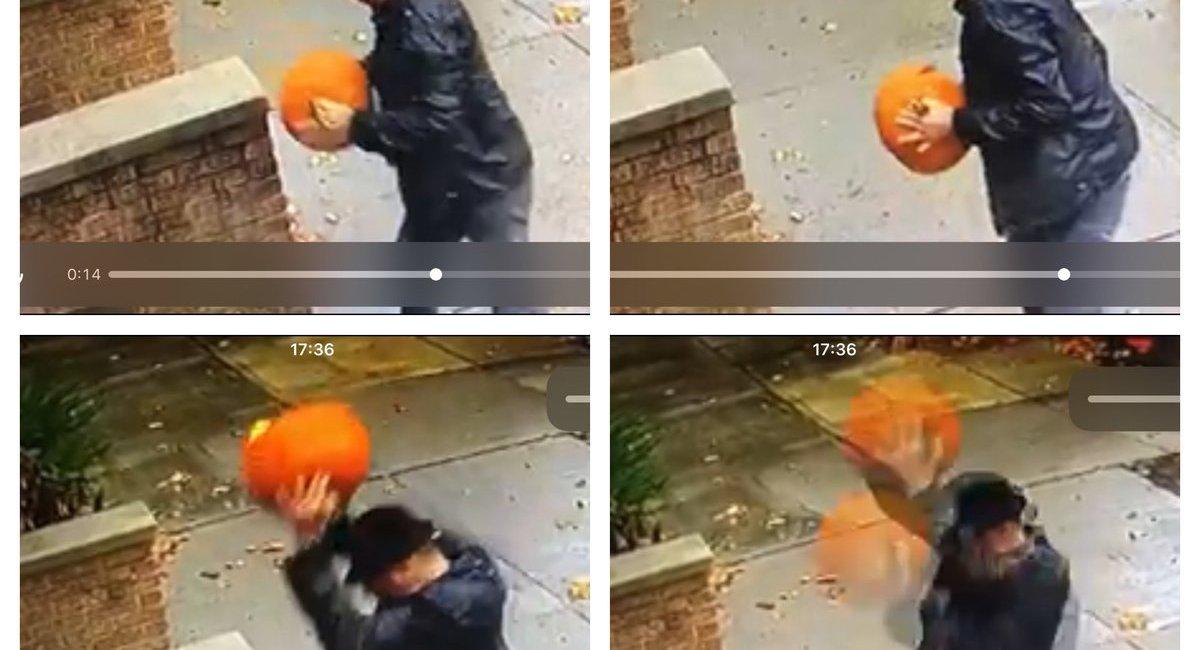 Grown Adult Caught On Video Smashing Pumpkins In Bay Ridge