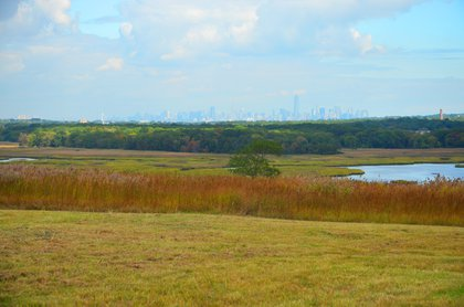 View from North Park area of Freshkills Park<br/>