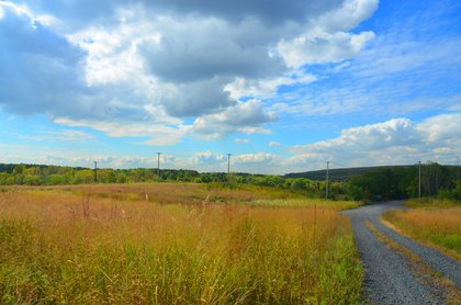 Freshkills Park. Seriously, this is New York City? Yes it is!<br/>