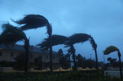 Palm trees sway from the winds of Hurricane Matthew, October 7, 2016 on Cocoa Beach (Getty Images)