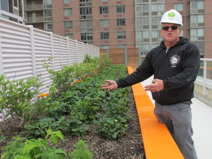 Gerard Lordahl, Director of Open Space Greening at GrowNYC<br/>