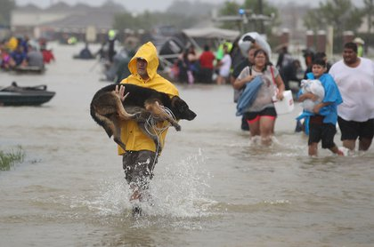 People evacuate their homes after the area was inundated with flooding from Hurricane Harvey on August 28, 2017 in Houston, Texas<br>(Getty Images)
