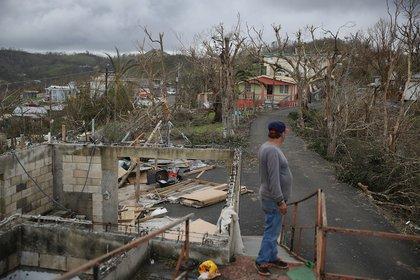 Telesforo Menendez surveys the damage in his neighborhood on Sunday, September 24th in Hayales de Coamo, Puerto Rico. (Joe Raedle/Getty Images)