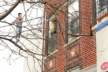 A police officer speaks to the man, who is on a tree branch while holding his phone to his ear.<br/>