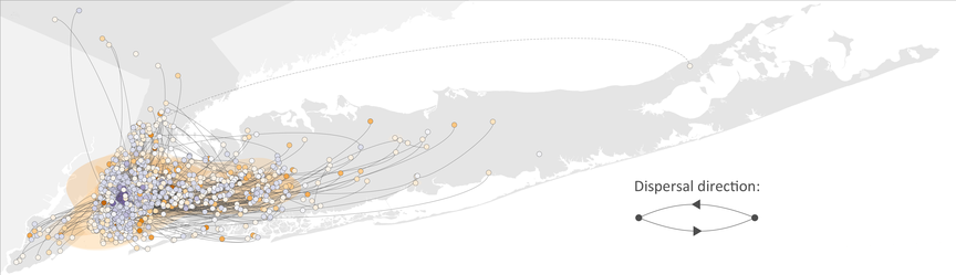 Dots and lines on the map show how COVID-19 infections spread across New York City and Long Island in the spring of 2020.