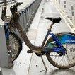 Barney the Barnacle Bike<br>