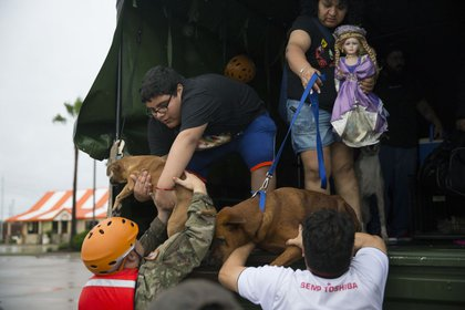 Texas Army National Guard members help down families that were rescued from their flooded Pine Forest Village neighborhood due to high water from Hurricane Harvey August 29, 2017 in Houston, Texas<br>(Getty Images)