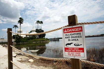 Along the Seven Seas Lagoon on June 18, 2016 (Getty Images)