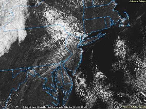 Nothing but fluffy cumulus clouds today's GOES-16 image