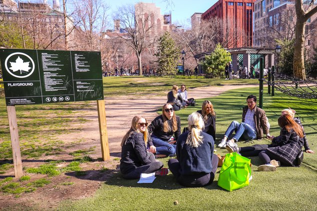 A group of people sit in close proximity on the grass in Washington Square Park in NYC against the advice from officials and health experts.