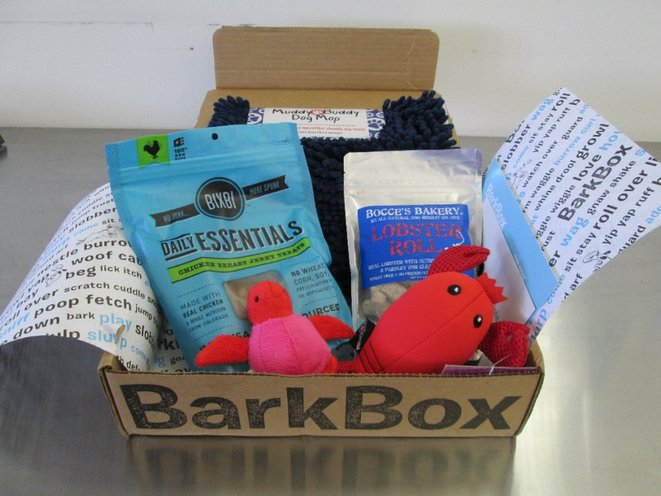 Adorable Photos Our Canine Teammates Get Barkbox A Treat