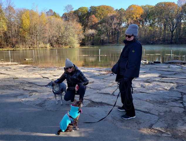 Prospect Park Tackles Toxic Algae Blooms With Nature-Based Technology