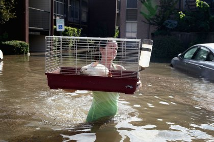 : Shannon Danley carries a rabbit to a rescue boat after it was found floating in floodwater in an apartment complex after it was inundated with water following Hurricane Harvey on August 30, 2017 in Houston, Texas.<br>(Getty Images)