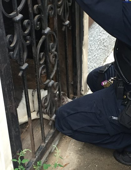 Police officers work to remove Mila from the door<br>