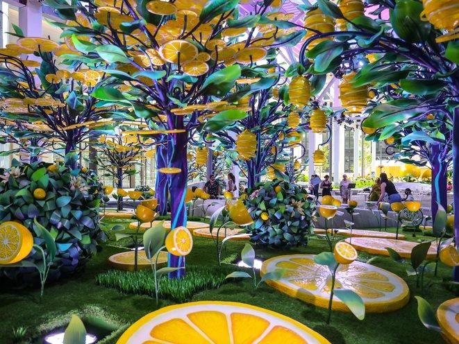 Photos: A Fantastical Lemon Wonderland Grows Under Some Scaffolding On  Ninth Avenue - Gothamist