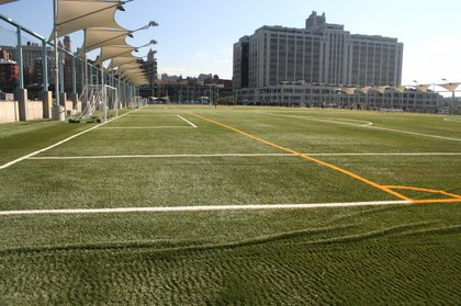 The turf is still a little wrinkly.