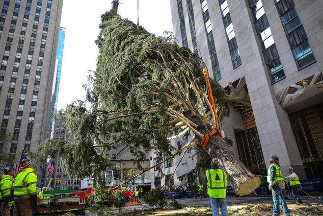Arbre du Rockefeller Center