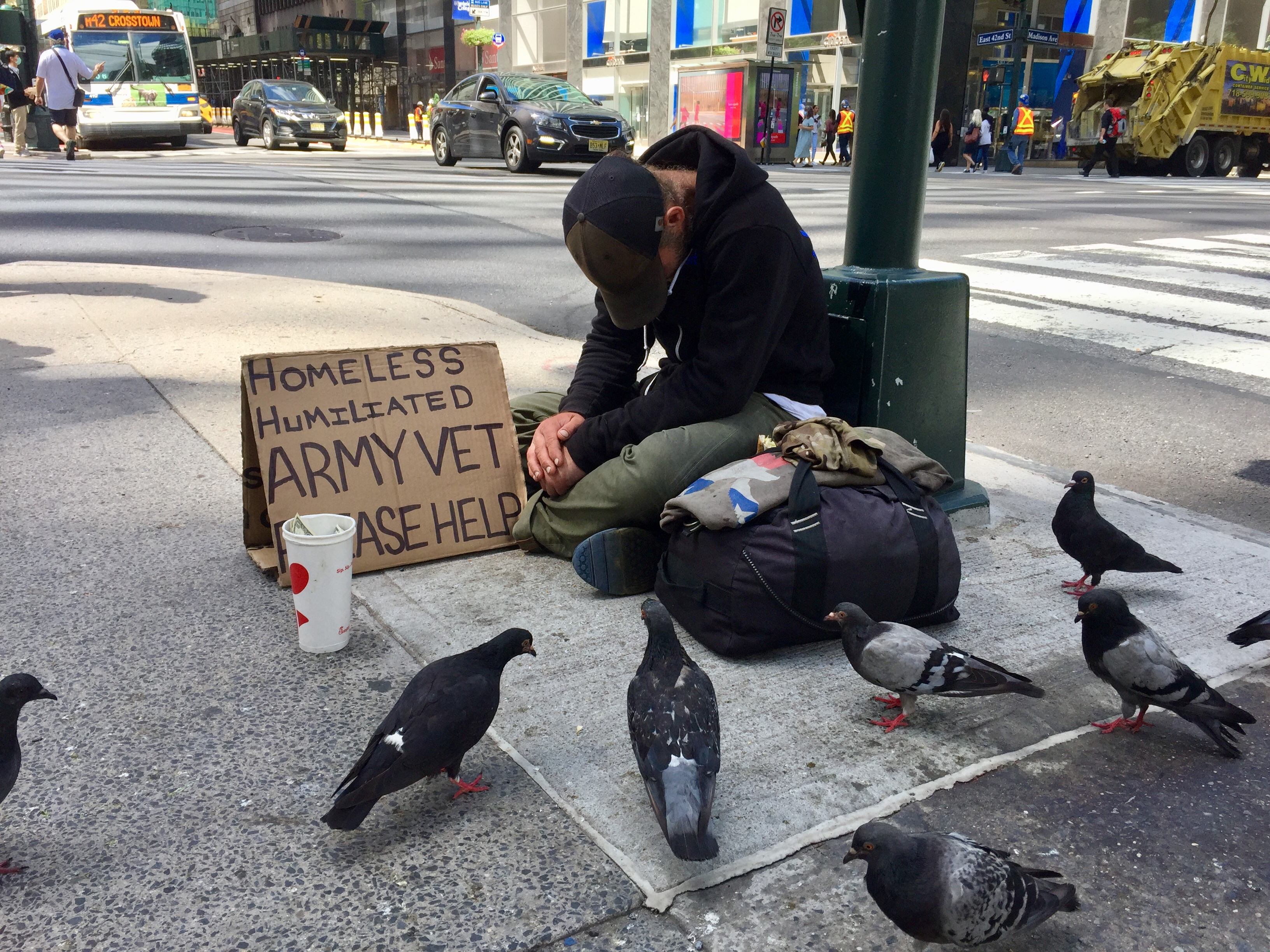 A man sitting in front of a street lamp, with a sign saying he's a Veteran... pigeons in the foreground