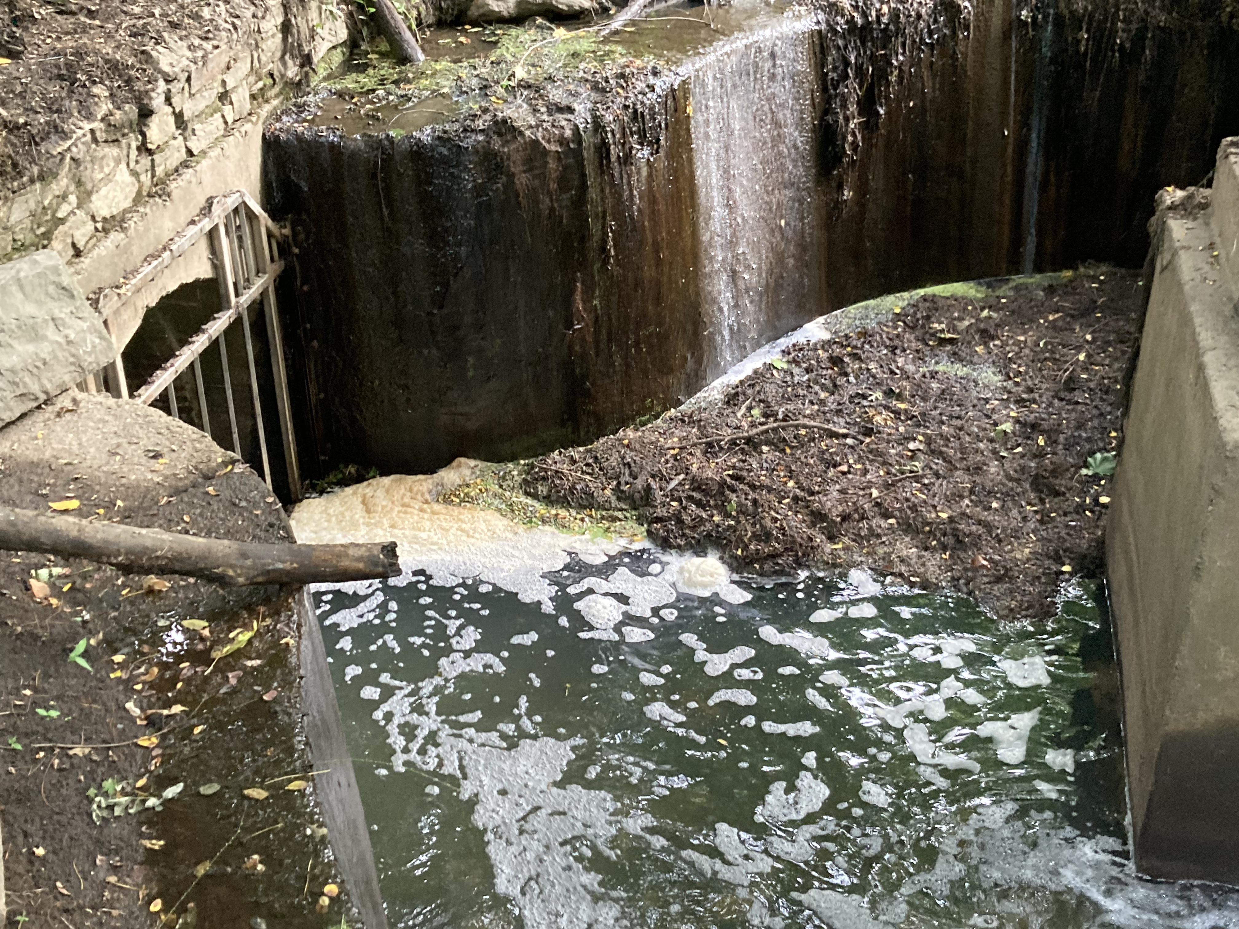 آب پارک دریاچه وان کورتلند از این زهکشی به فاضلاب برادوی می رود.