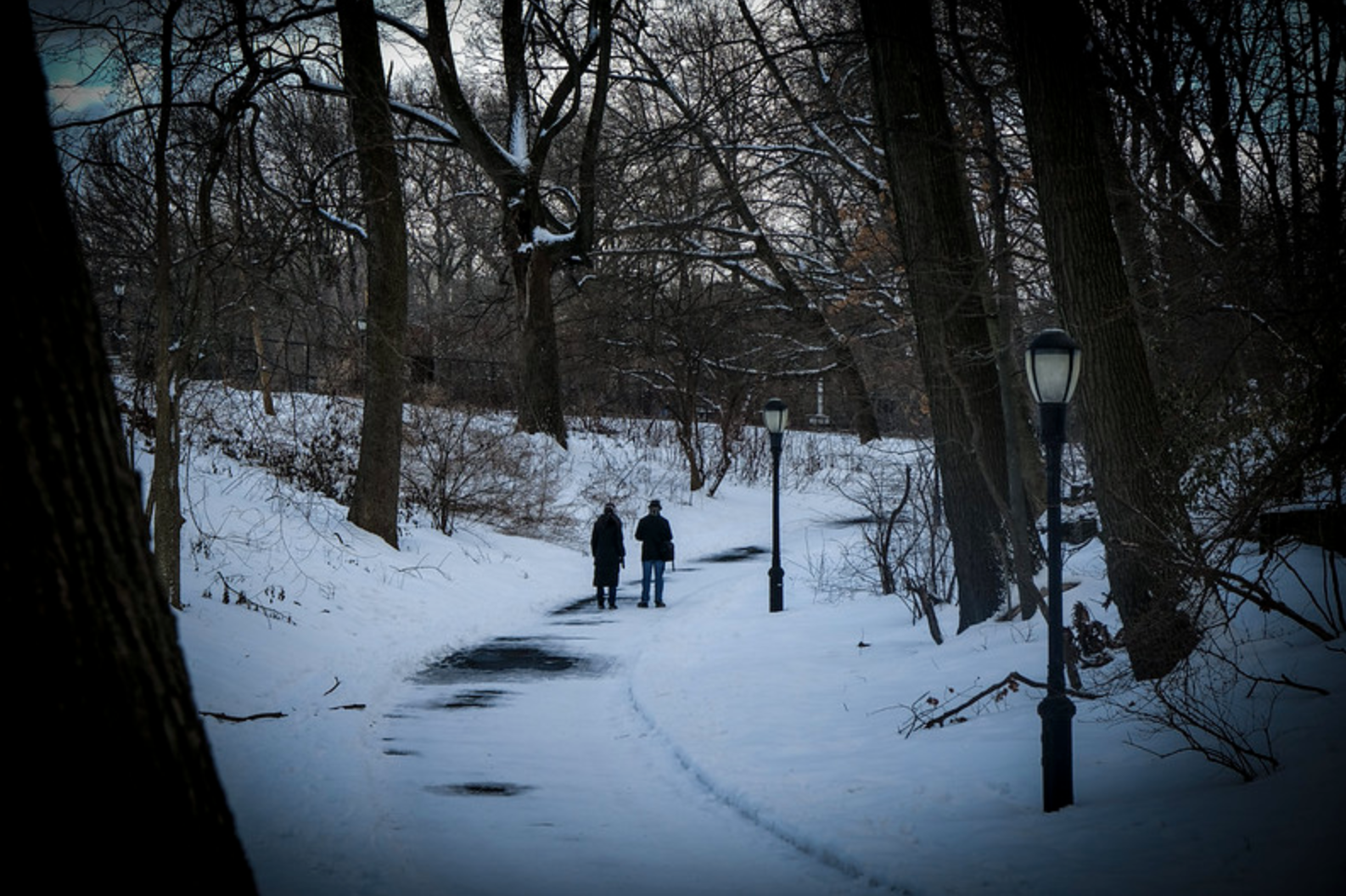 Two people walk on a snowy path winding through trees in Inwood Park.