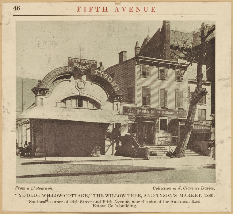 Ye Old Willow Cottage' Fifth Avenue & 44th Street. During the Draft Riots in which the Colored Orphan Asylum was burned, this cottage became the headquarters of the mob.